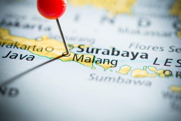 Operator Bus Banyuwangi Malang